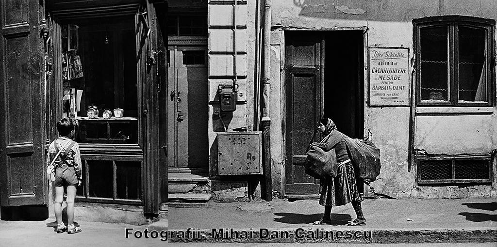 Mihai Dan Călinescu Photos (3)
